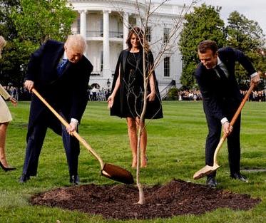 Presidents Trump & Macron buddeln Baum ein
